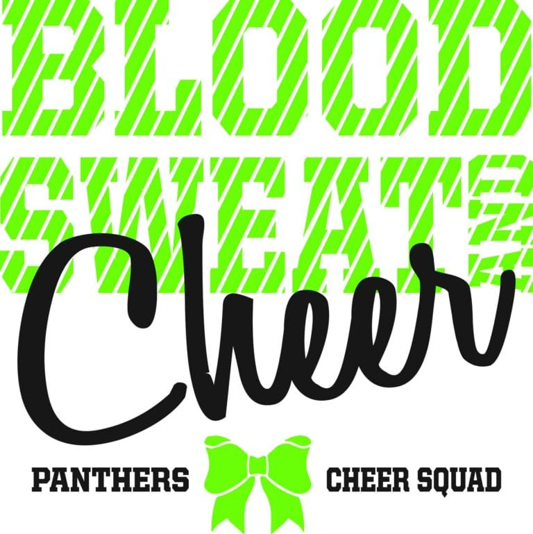 Blood Sweat and Cheer Panthers Cheer Squad