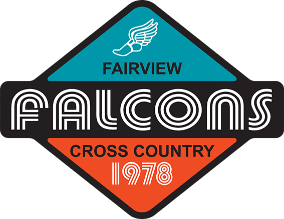 falcons-comp2