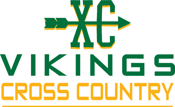 vikings-comp